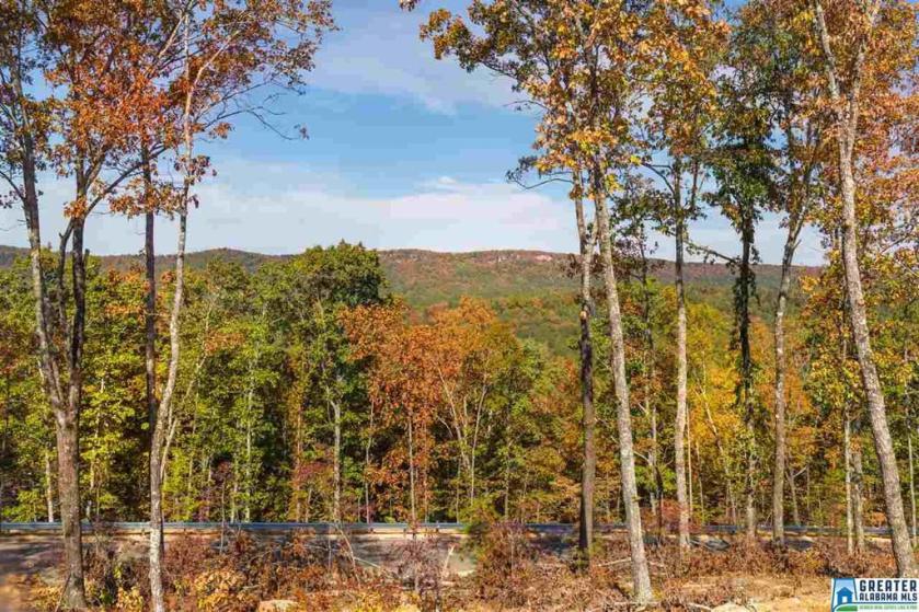 Property for sale at 2088 Lindsay Ln Unit 11, Chelsea,  Alabama 35043