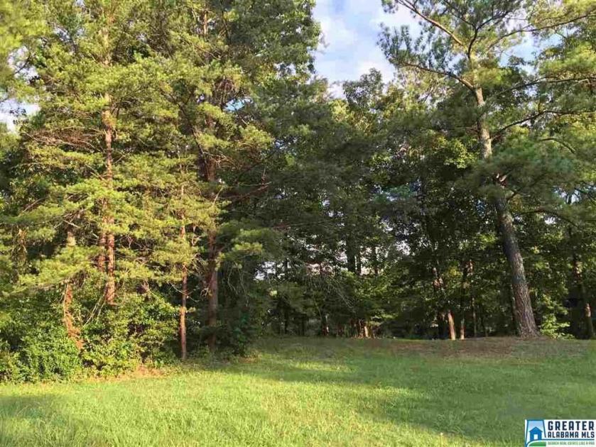 Property for sale at 501 Timberline Trl Unit 46, Calera,  Alabama 35040