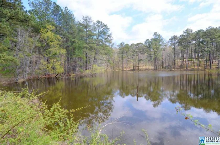 Property for sale at Armon Ln Unit BEG 66 N OF NW COR NE1/4 OF SE1/4 OF NE1/4 OF NW1/, Helena,  Alabama 35080