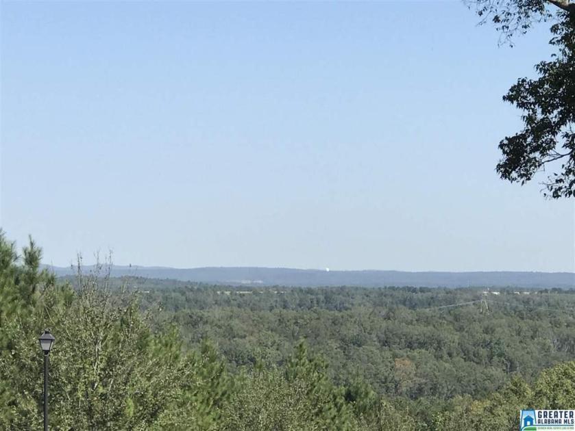Property for sale at 1028 Long Leaf Lake Dr Unit 143, Helena,  Alabama 35022