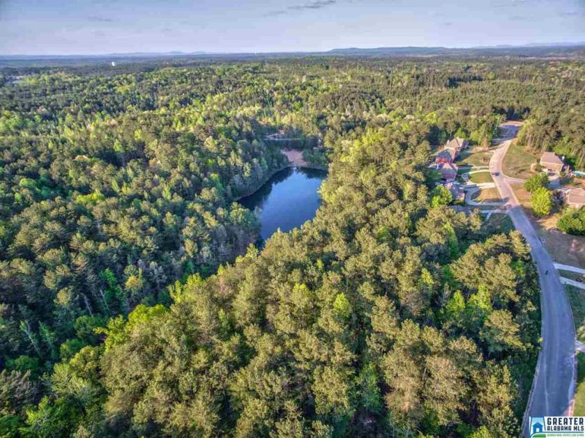 Property for sale at 1077 Long Branch Pkwy Unit 148, Calera,  Alabama 35040