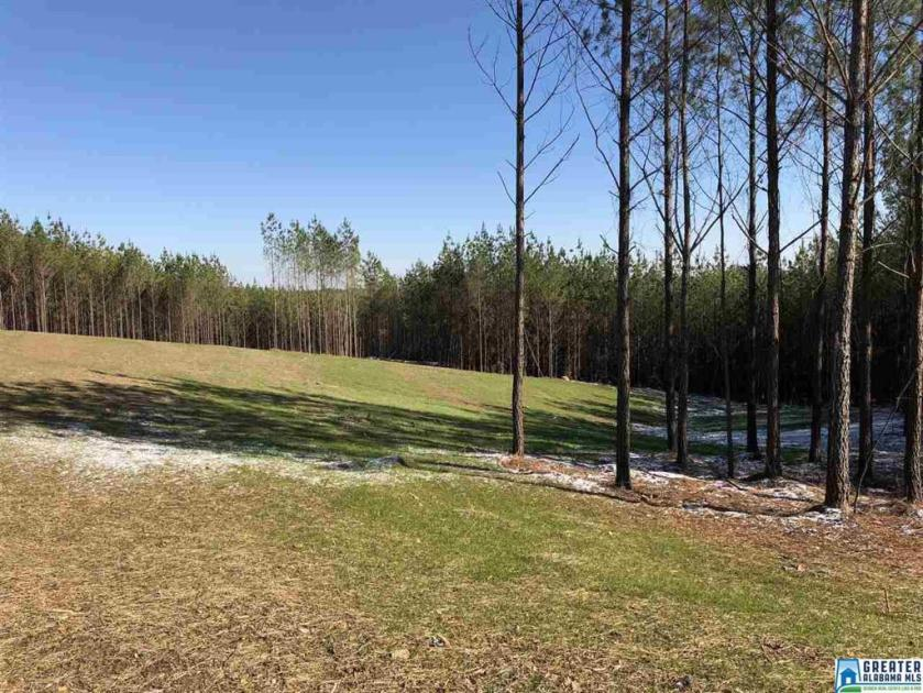 Property for sale at 631 Hwy 69 Unit 7, Chelsea,  Alabama 35043