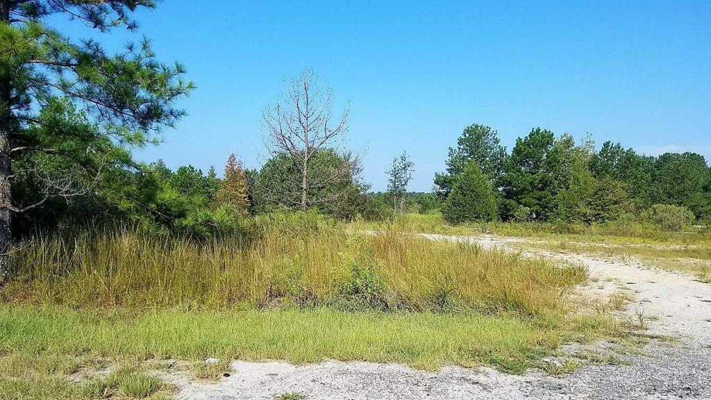 Property for sale at 0 OLD UNION POINT ROAD, Greensboro,  Georgia 30642
