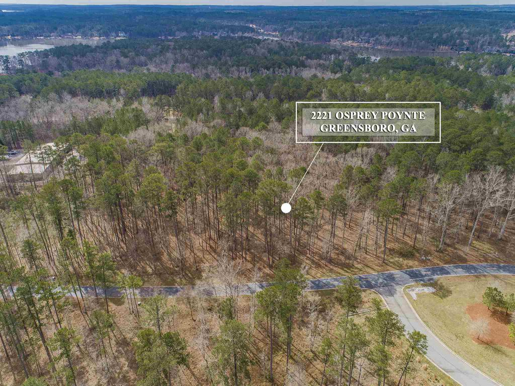 Property for sale at 2221 OSPREY POYNTE, Greensboro,  Georgia 30642