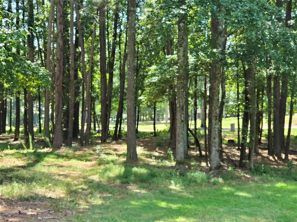 Property for sale at 1001 SPYGLASS HILL, Greensboro,  Georgia 30642