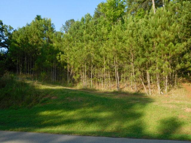 Property for sale at 1450 SNUG HARBOR DRIVE, Greensboro,  Georgia 30642