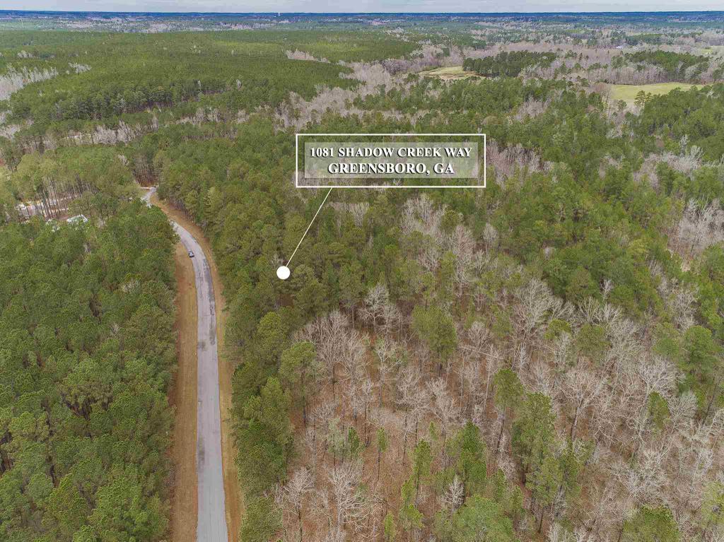 Property for sale at 1081 SHADOW CREEK WAY, Greensboro,  Georgia 30642