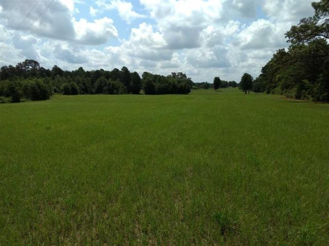 Property for sale at TBD County Road 264, Beckville,  Texas 75631