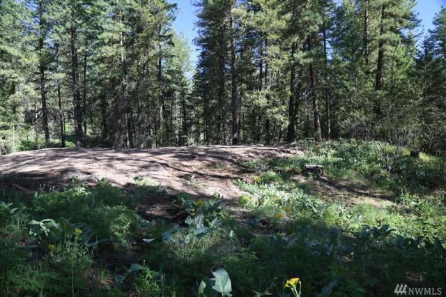 Property for sale at 0 Virginia Hills, Winthrop,  WA 98862