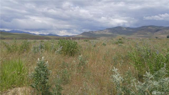 Property for sale at 4 Brook Trout Lane, Methow,  WA 98834