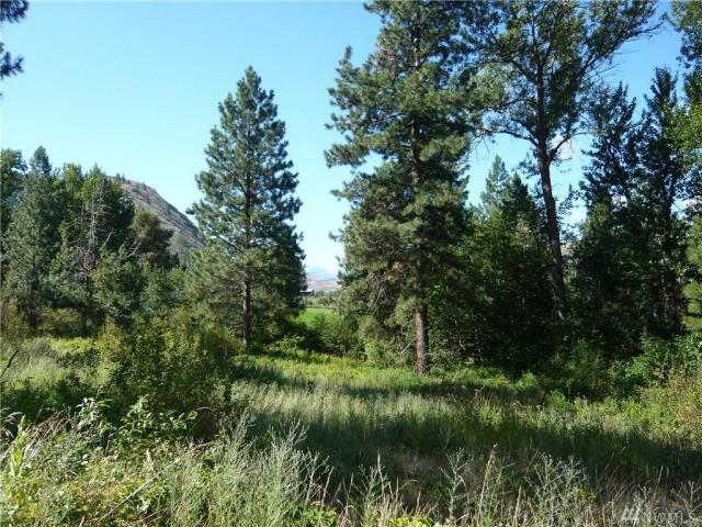 Property for sale at 593 E Chewuch Rd, Winthrop,  WA 98862
