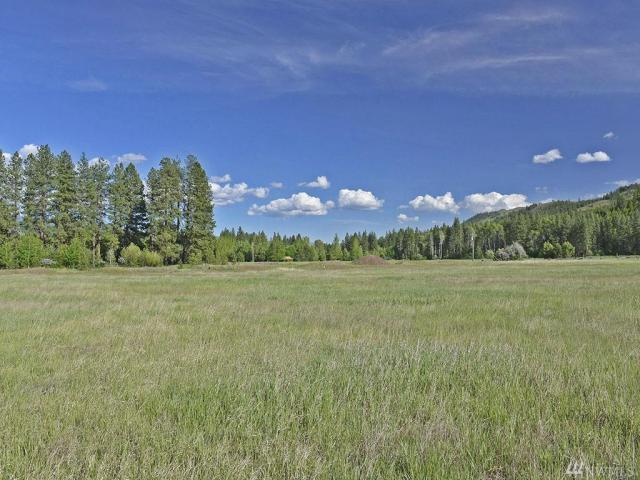 Property for sale at 0 Lucky Louie Rd, Winthrop,  WA 98862