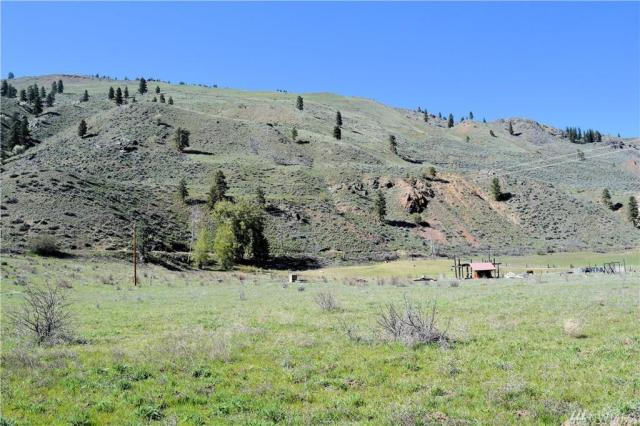 Property for sale at 239 Twisp Carlton Rd, Twisp,  WA 98856
