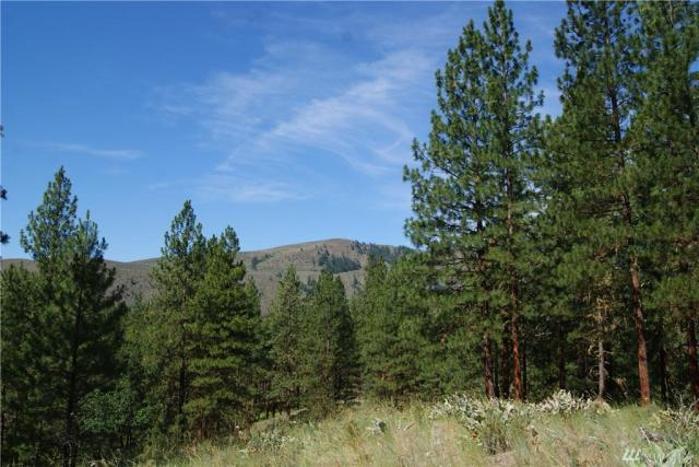 Property for sale at 59 Larkspur Dr, Winthrop,  WA 98862
