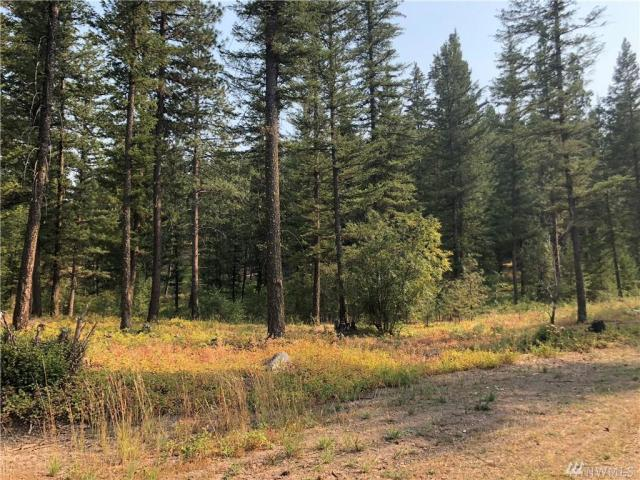 Property for sale at 0 Yellowleaf Rd, Winthrop,  WA 98862