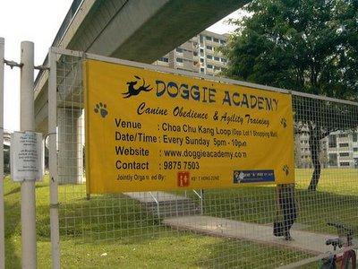 Doggie Academy
