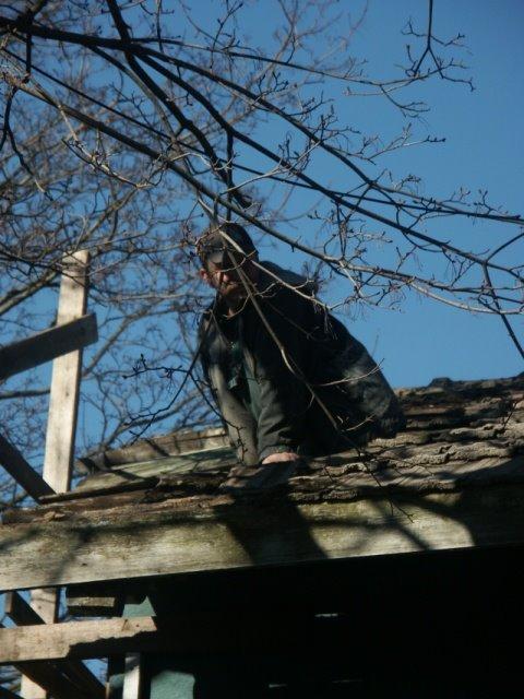 onu ronis katusele