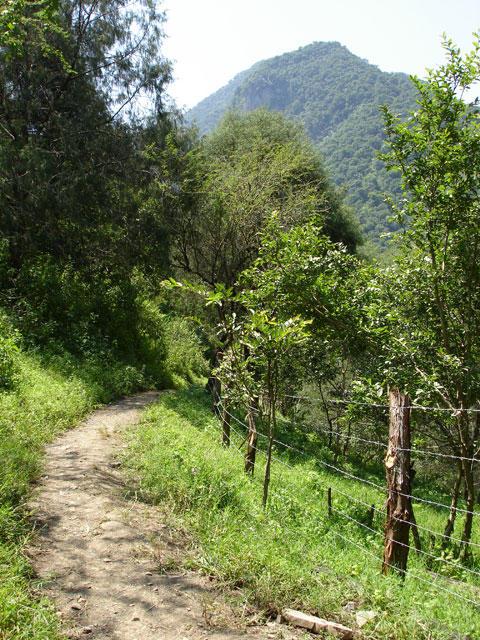 Un Largo y Sinuoso Camino