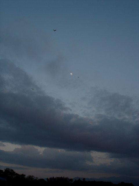 Triangulo Lunar