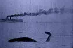 brontosaurus at sea
