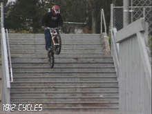 Bush Biker