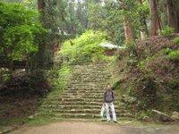Día 9: Japón (Himeji: Castillo de Himeji, Monte Shosha y Engyoji con Templos Maniden, Jikido, Jogyodo y Daikodo, etc).