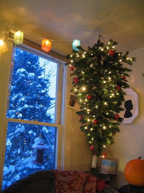 Top 28 Why Do Hang Christmas Trees 1000 Images About