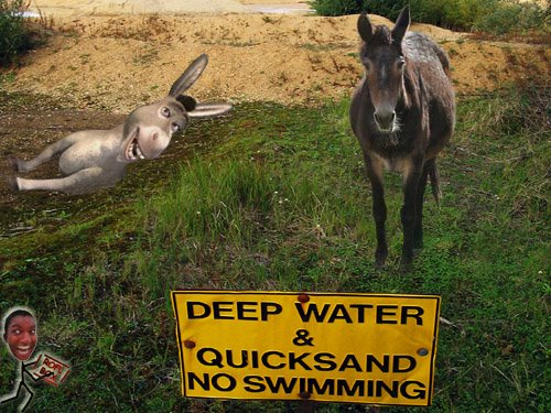 Image result for . A mule won't sink in quicksand but a donkey will