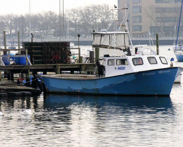 A Day On Sheepshead Bay Blather From Brooklyn
