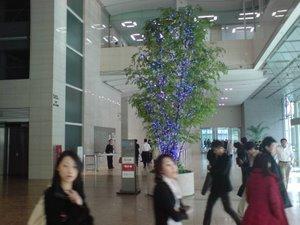 Blåa trädet