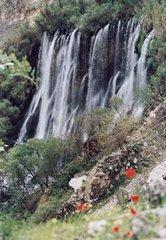 آبشار شوی