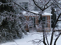 Snow01-231204