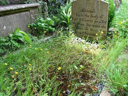 Swampy gravesite