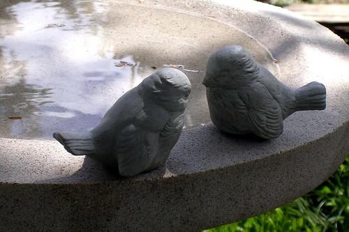 Bird Bath - 2