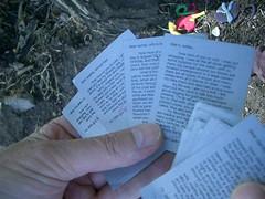 many notes