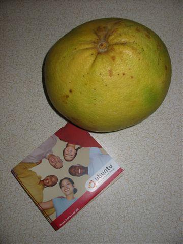 Φωτογραφία που δείχνει τα CD με το Ubuntu Linux που έλαβα τον Ιούνιο. Μαζί στη φωτογραφία φαίνεται και ένα φρούτο.