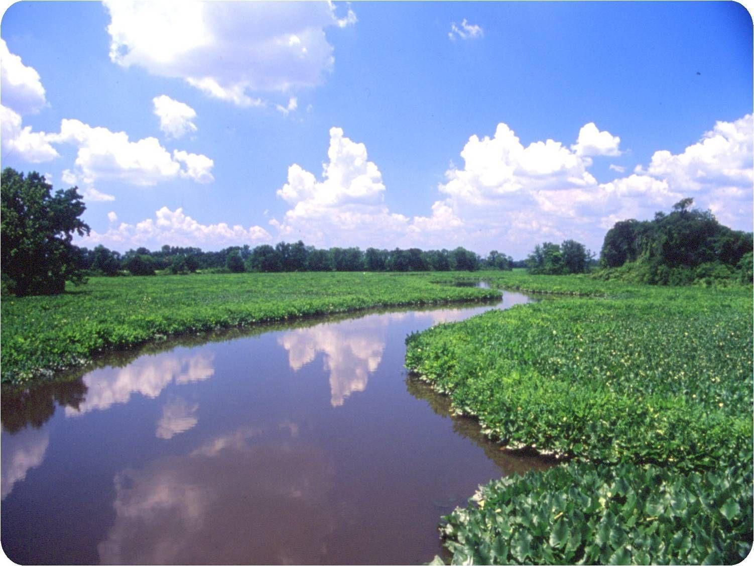 South Jersey Land Amp Water Trust Glassboro Nj