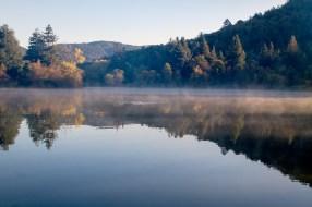 Morning Mist, Spring Lake