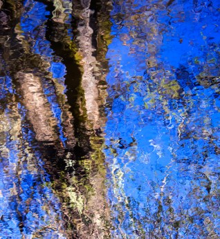 Reflections from the-Bridge