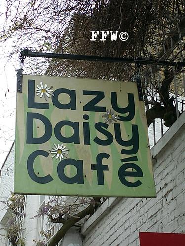 lazydaisy