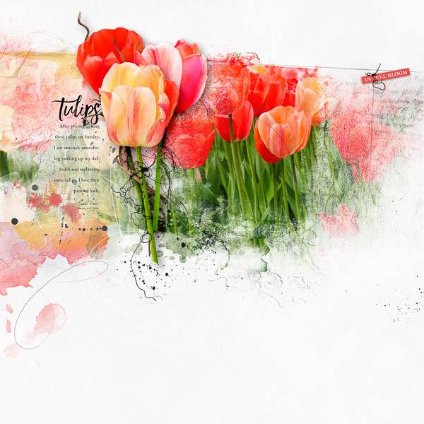 Tulips_lkdavis_600