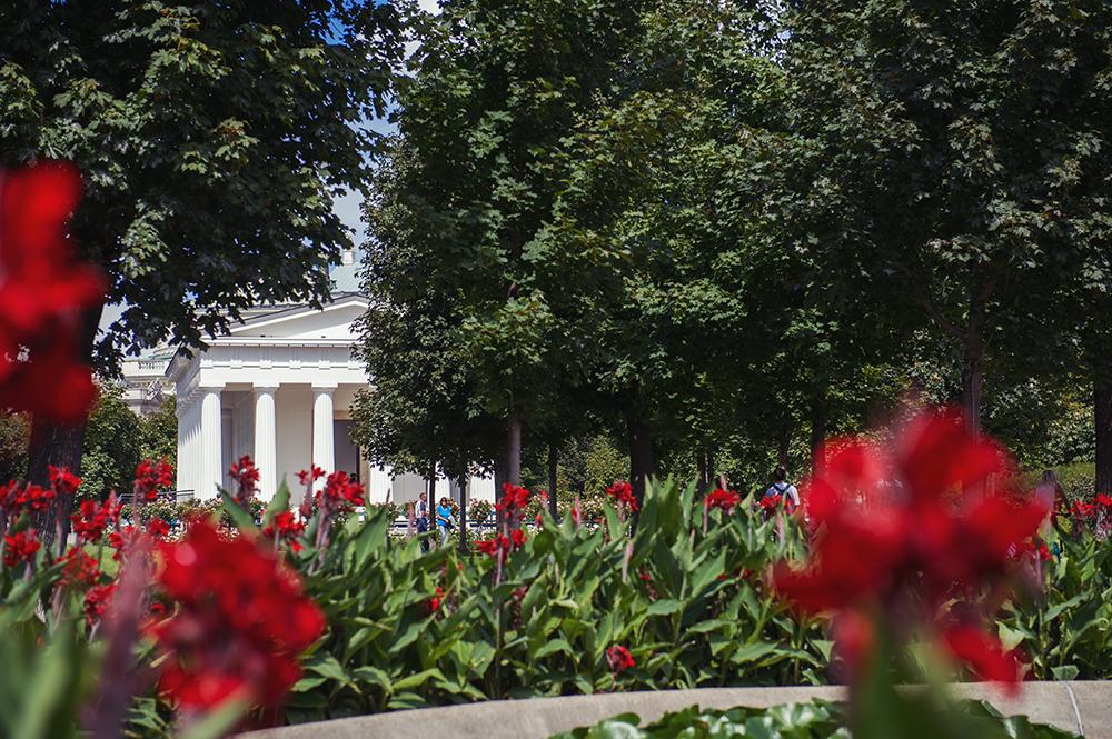 volksgarten, vienna, roses, sophia grabner, park, nature, city, reign