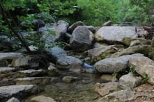 Rocks & Creeks