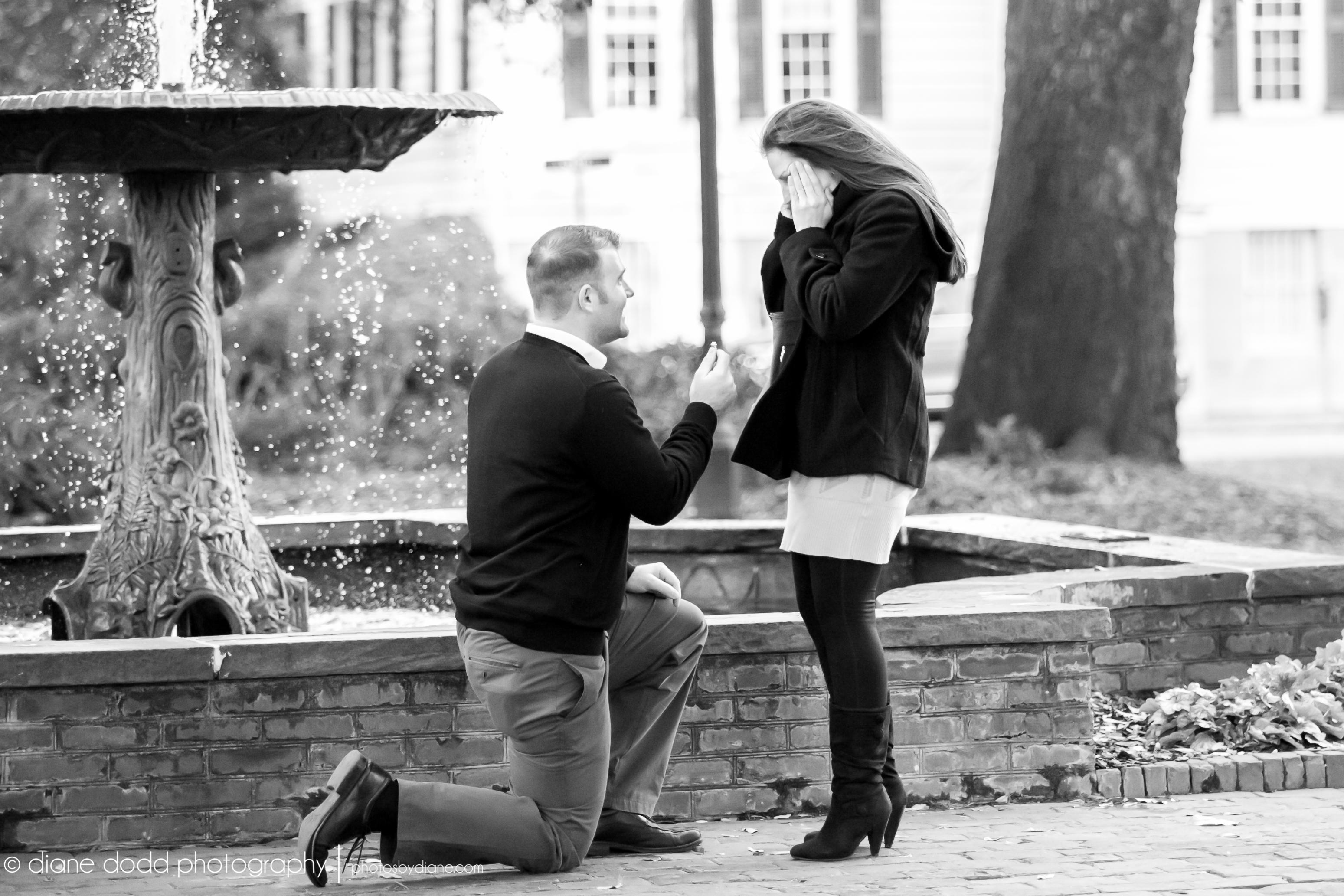 Marriage Proposal In Columbia Square