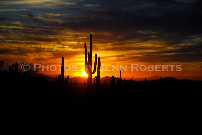 Arizona Sunset - Image 1