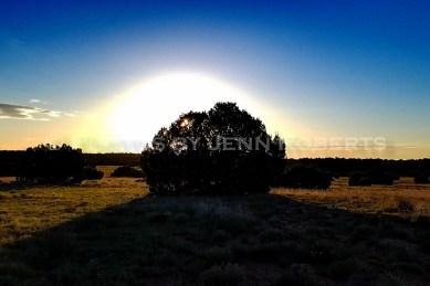 Arizona Sunrise - Image 2