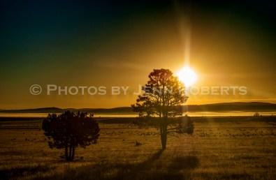 Arizona Sunrise - Image 6