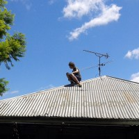 Weekly photo challenge: Up on the roof