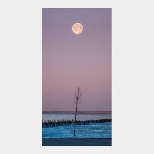 Månen og kosten
