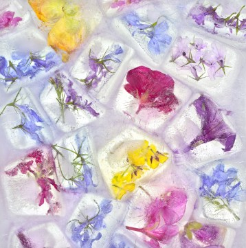 Flowers Cubed · 2014 · 20 x 20 in.
